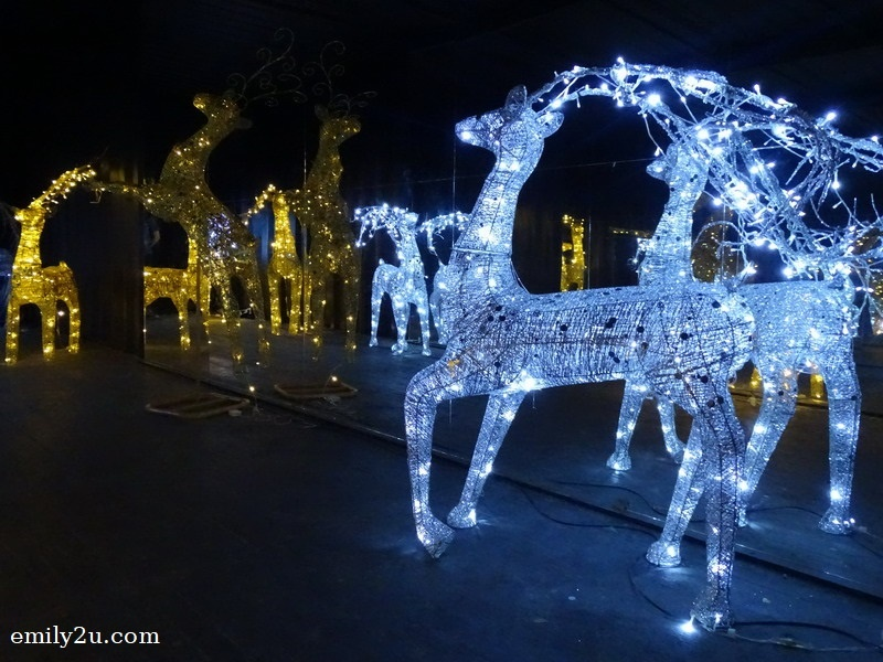 10. reindeer
