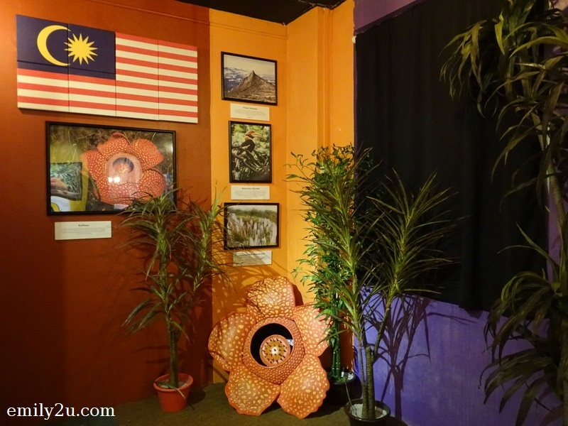12. dedicated corner on Rafflesia, the world's biggest flower, which is found in some parts of Malaysia