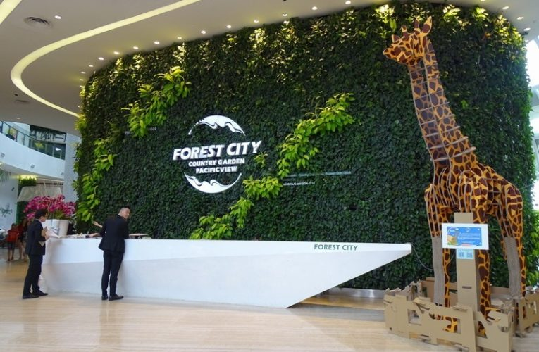 Forest City By Country Garden Pacificview