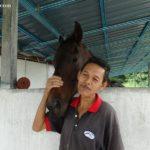 2 iSmart Outdoor Equestrian Facility