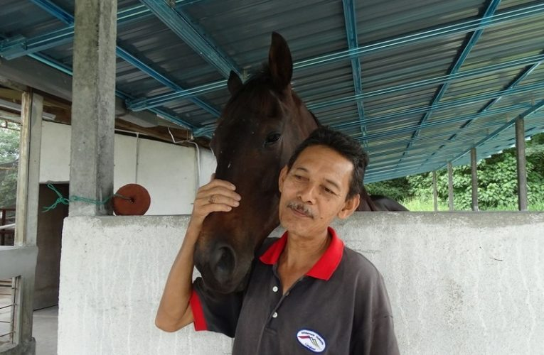 iSmart OUTDOOR Equine Riding & Archery, Ipoh