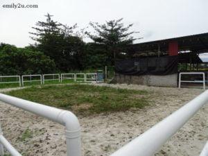 4 iSmart Outdoor Equestrian Facility
