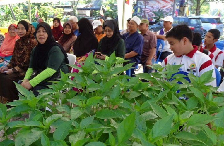Putrajaya Urban Farming