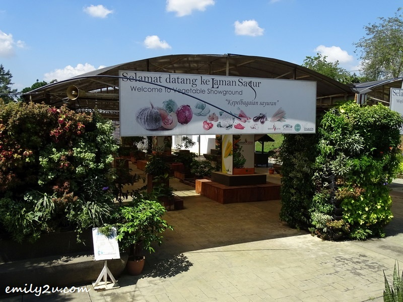 17. Vegetable Showground (Laman Sayur)