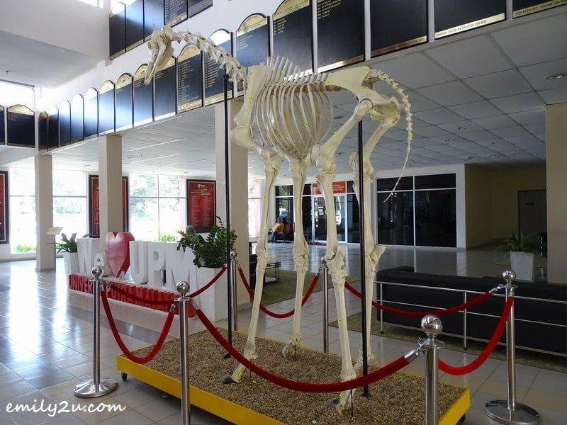 2. at the university lobby