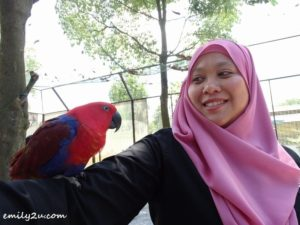 26 Malaysia Agro Exposition Park Serdang MAEPS