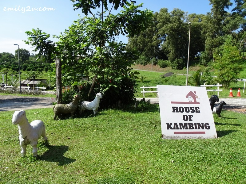 5. welcome to House of Kambing