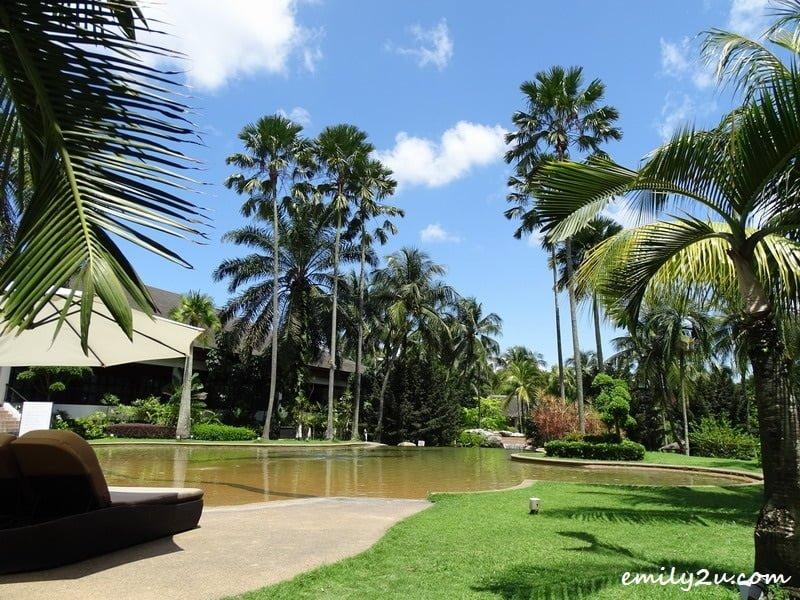 26. pool & garden view
