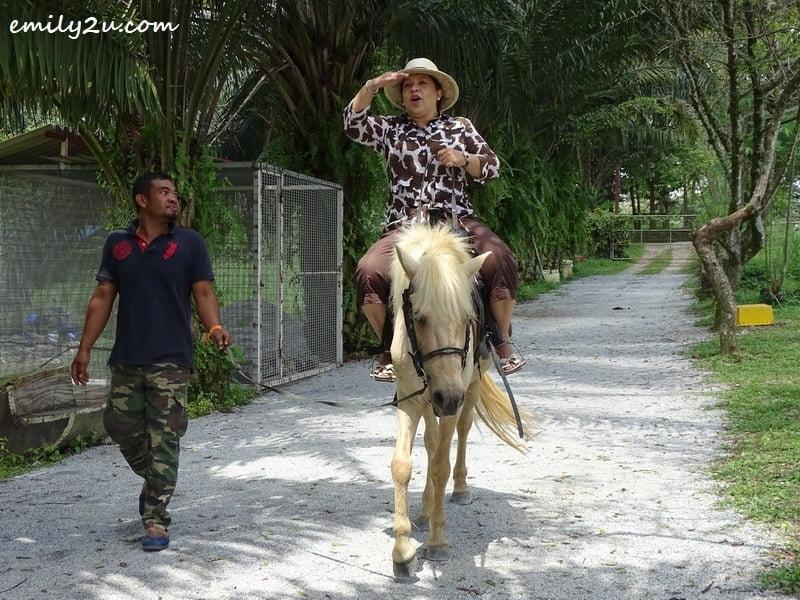 33. Maria Tunku Sabri rides Zuuko, the pony