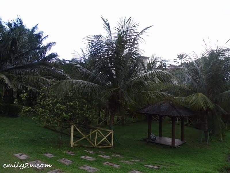 4. palm trees