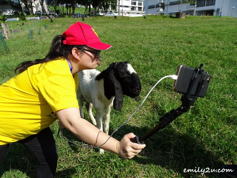 7. blogger Racheal takes a selfie with a goat