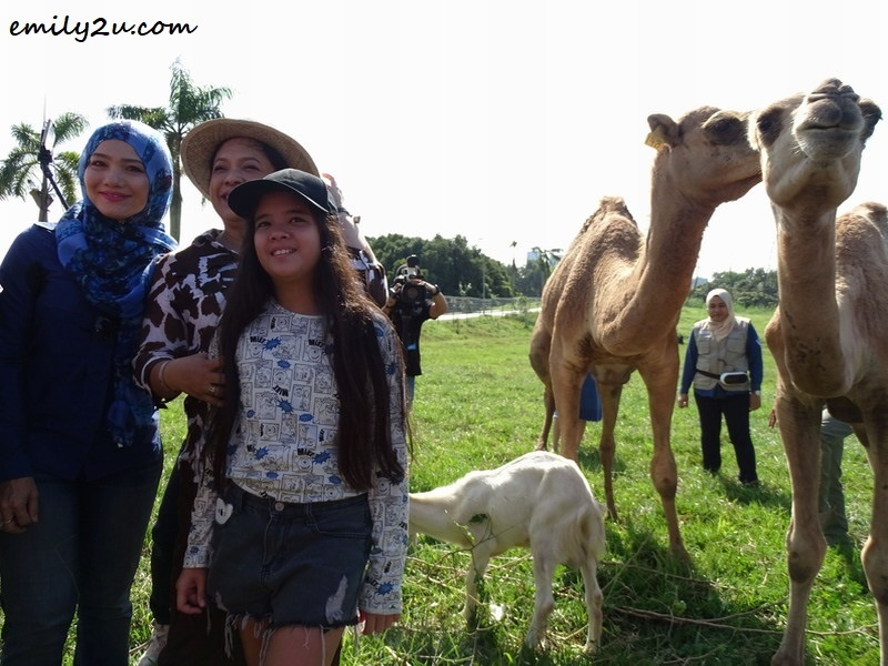 8. photo opportunity with camels