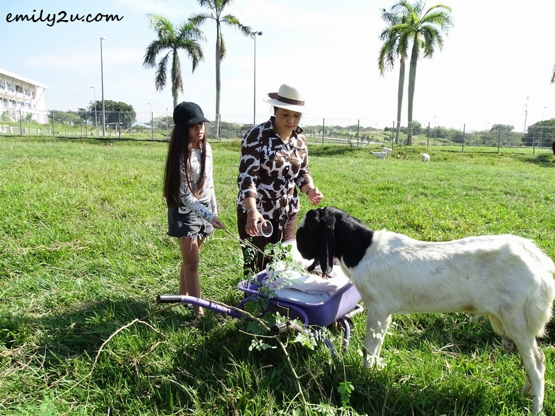 9. Maria Tunku Sabri and her daughter feed a goat