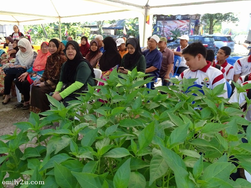 urban farming workshop at Presint 9, Putrajaya