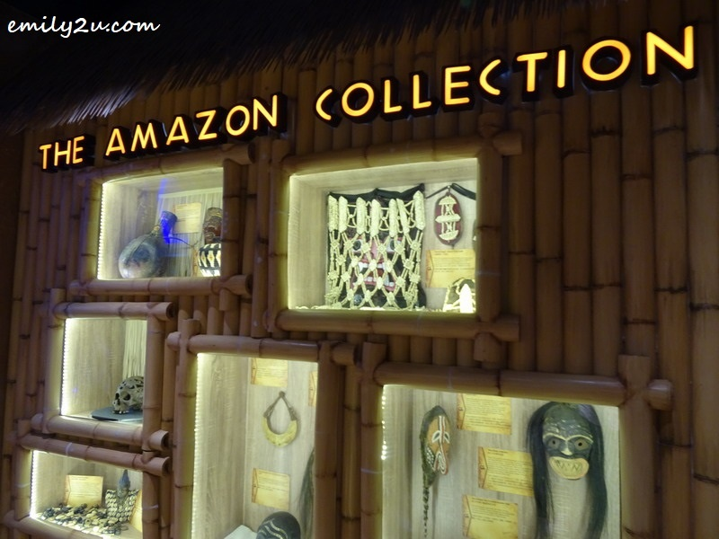 20. The Amazon Collection