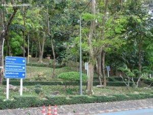 3 Hat Yai Municipal Park