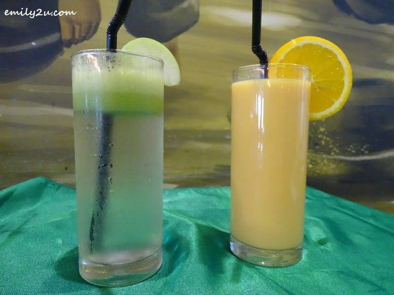 18. Apple Lemon Juice (L) & Orange Juice (R)