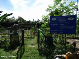 1 Community Farming Labuan
