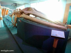 11 Labuan Marine Museum