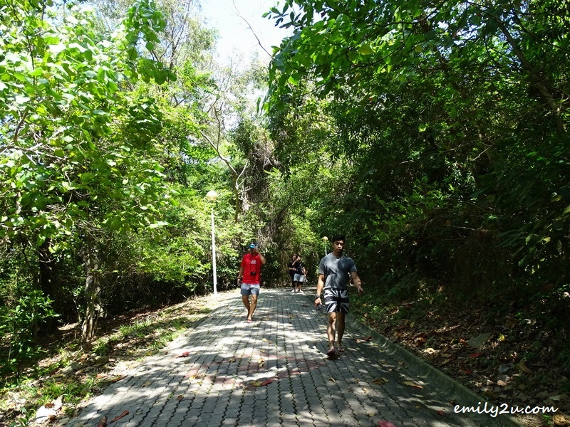 11. walking trail around one part of the island