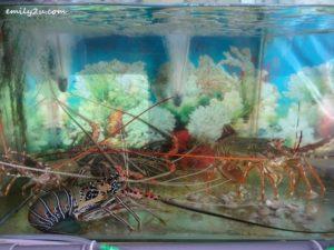 3 Mr Crab Seafood Labuan