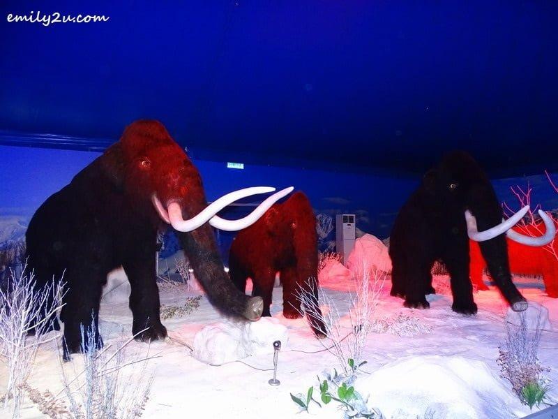 4. Woollu Mammoth