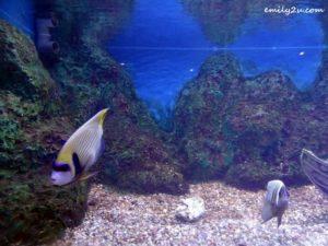 5 Labuan Marine Museum