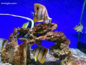 7 Labuan Marine Museum