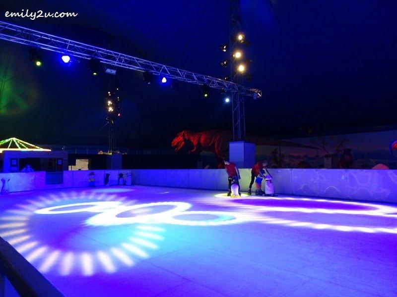 8. ice skating rink