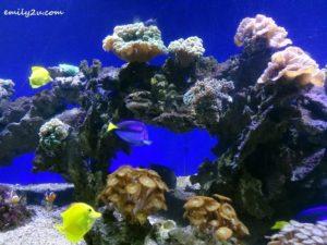 9 Labuan Marine Museum