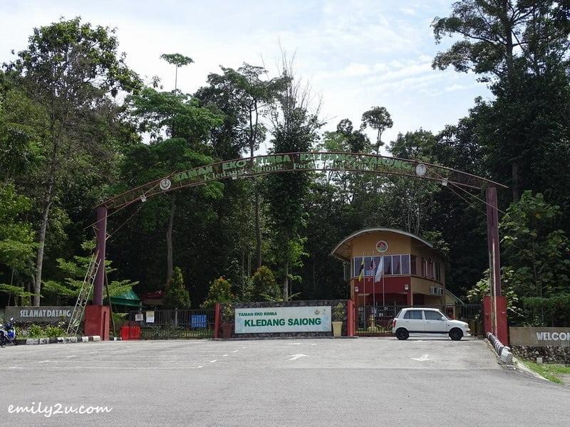 1. Kledang Saiong Forest Eco Park, Ipoh