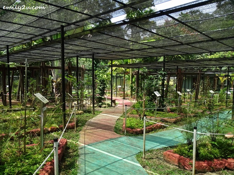 20. overview of Taman Nepenthes