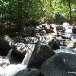 Kledang Saiong Forest Eco Park (Taman Rimba Kledang Saiong), Ipoh