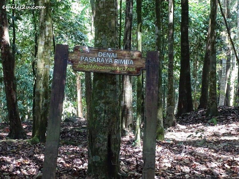 11. Jungle Hypermarket Trail