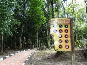 4 Kledang Saiong Forest Eco Park