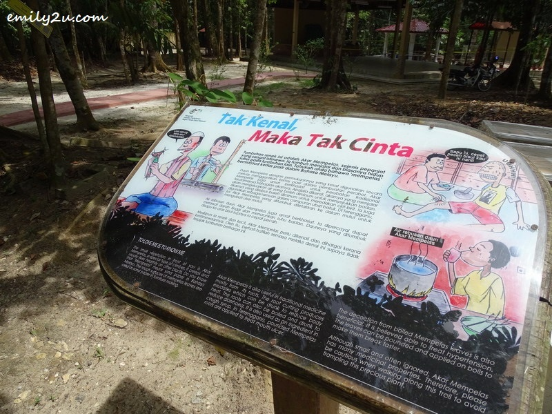 5. plant information board is presented in dual language, cartoon style