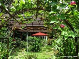 7 Kledang Saiong Forest Eco Park