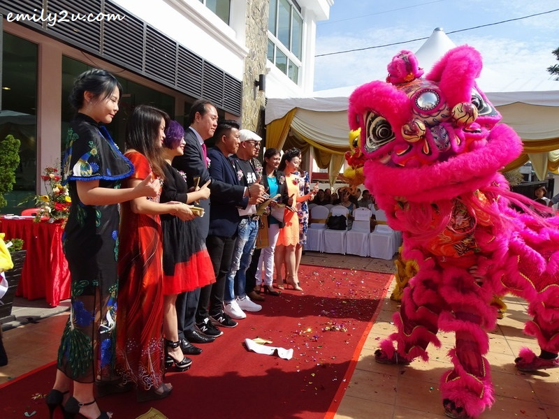 10. lion dance performance