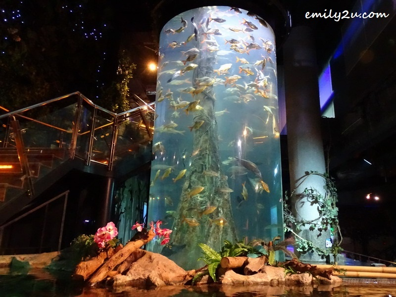 11. interior of Aquaria KLCC