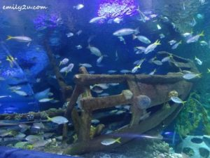 15 Aquaria KLCC