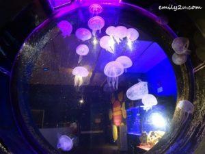 19 Aquaria KLCC