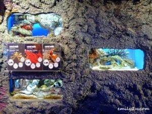 9 Aquaria KLCC