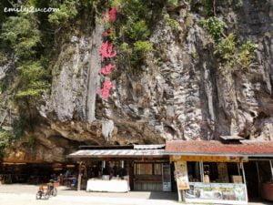 9 Qing Xin Ling Ipoh