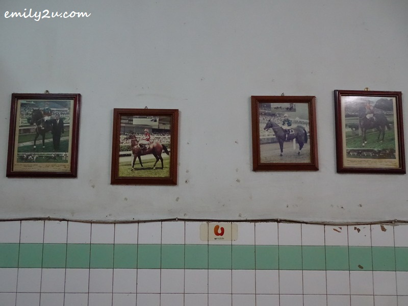 9. the coffee shop is decorated with photos of winning racehorses from decades ago