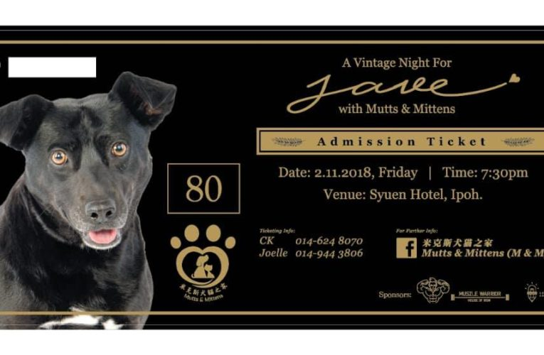 Announcement: Vintage Night with Mutts & Mittens Charity Dinner