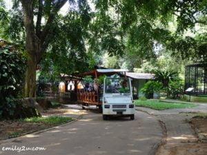 10 Melaka Zoo