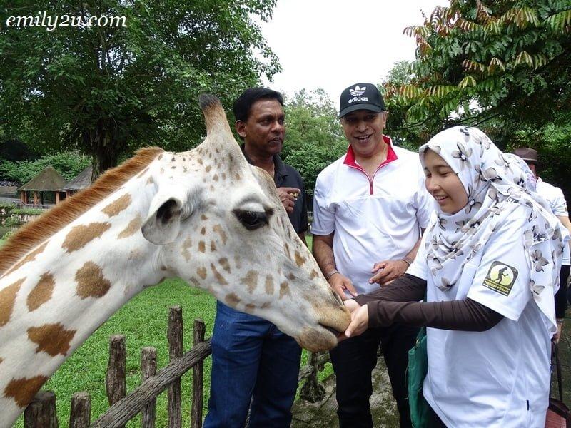 21. feeding the giraffe