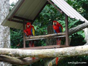 4 Melaka Zoo