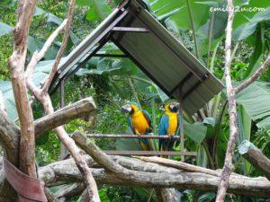 5 Melaka Zoo