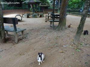 8 Melaka Zoo